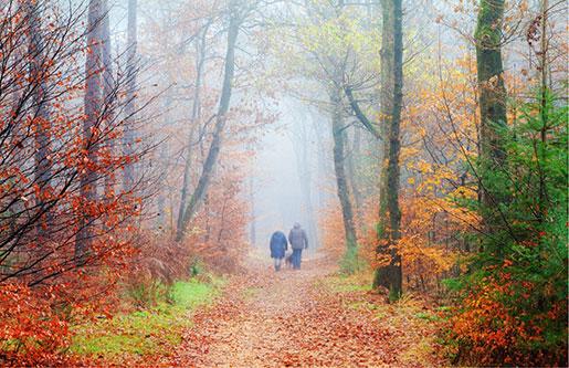 To personer i skog